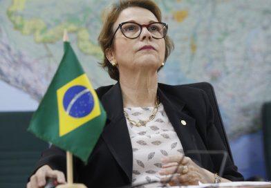 Brasil pode ser principal player para investimentos verdes no mundo, diz ministra