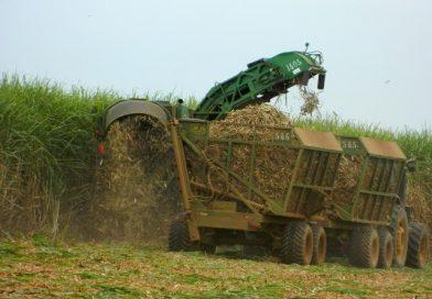 Indústria de cana e de veículos anunciam campanha de promoção do etanol
